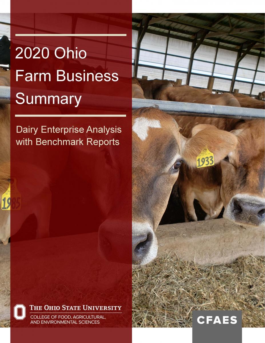 dairy summary